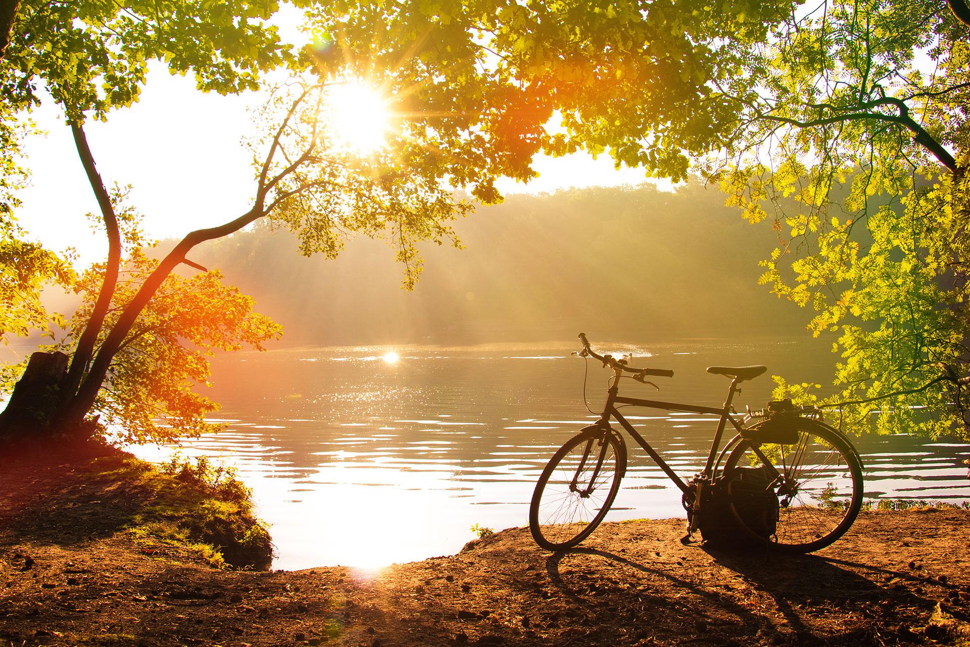 fahrradfahren_parkhotel_landau_120556313_subscription_xxl