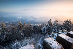 Schnee Winter Pfälzer Wald