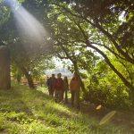 wanderweg südpfalz wandern pfalz landau