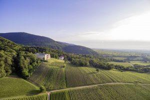 Suedliche Weinstrasse Villaludwigshoehe